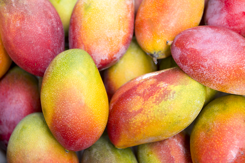 Product of the month: the mango
