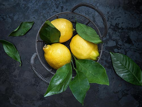 Product of the month: the lemon